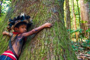 Indigenous child hugging a tree